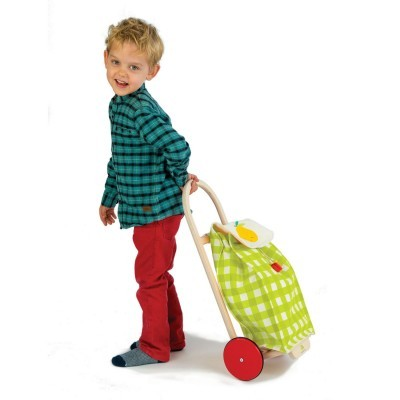 Pull Along Shopping Trolley